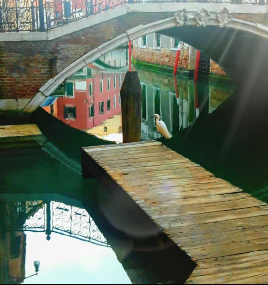 венеция утро