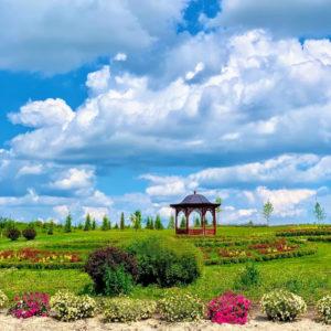 Парк Добропарк