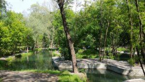 Саржин яр озеро