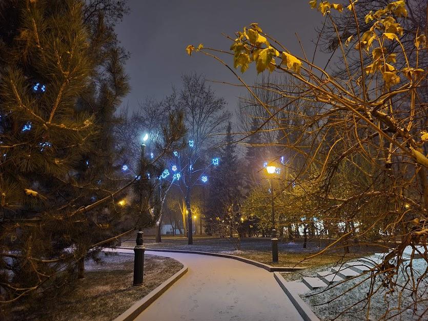 Сад Шевченко зима