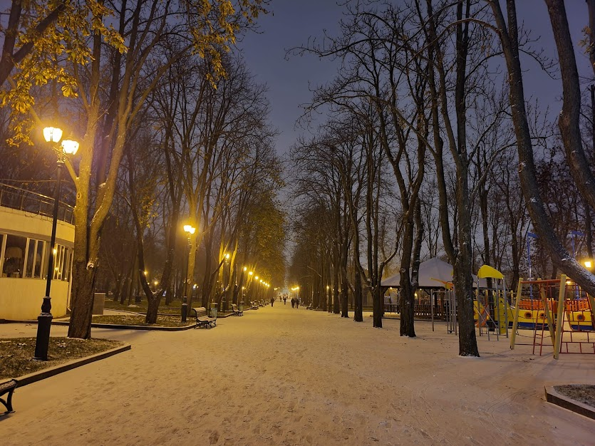 Сад Шевченко зимой